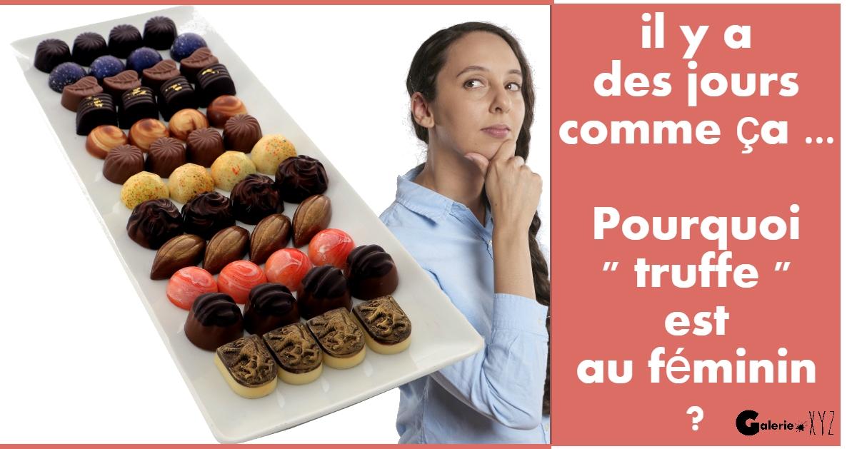 """Pourquoi """" truffe """" est au féminin ?! Texte par Ama sculpteur"""