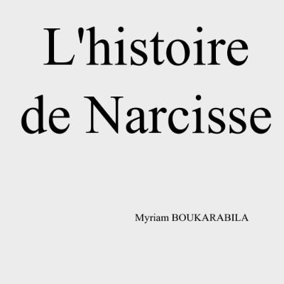 L'Histoire de Narcisse